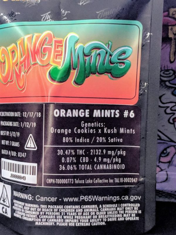 Jungle Boys Orange Mints