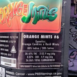 Jungle Boys Orange Mints