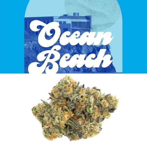 Ocean Beach Berner Cookies