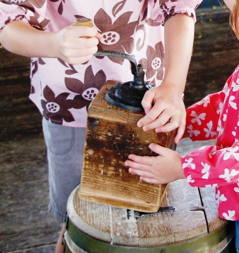Using a coffee grinder to grind wheat. (In about 25 turns, they got a couple of teaspoons of flour.)