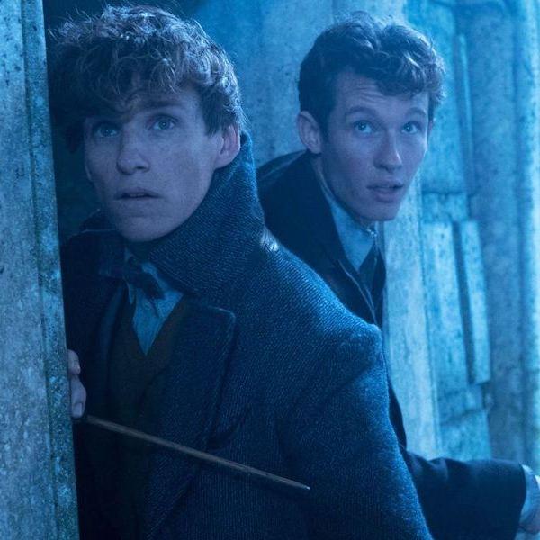 Film Fantastická zvířata 3 opět přeložen, proběhne další změna v hereckém obsazení