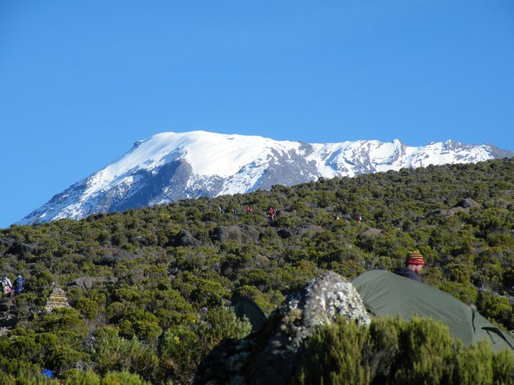 The summit of Kilimanjaro from camp