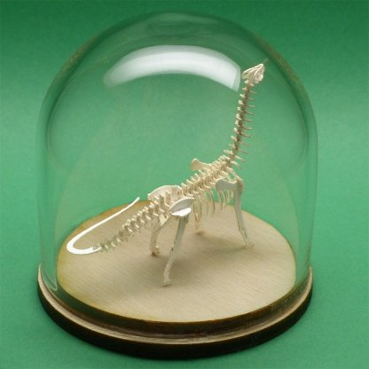 Brontosaurus tiny skeleton model in glass display dome by Tinysaur
