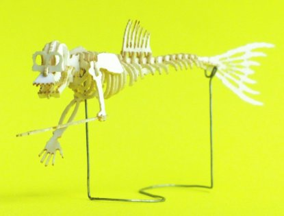Fiji Mermaid miniature skeleton model (without dome) by Tinysaur.us