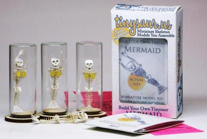 Mermaid All-in-one miniature skeleton model kit with laser-cut bones, several arm bones for different swimming styles, glass display dome, instructions, tweezers, glue, a magnifier, and packaging by Tinysaur.us