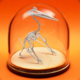 Quetzalcoatlus miniature skeleton model in hand-blown glass display dome by Tinysaur.us