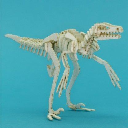 White Velociraptor miniature skeleton model