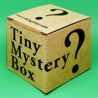 "Tiny Mystery Box package 2.5"" x 2.5"" x 2.5"" containing one unknown thing of a variety of unique items"