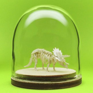 Triceratops miniature skeleton model in hand-blown glass display dome by Tinysaur.us