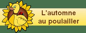 bannière widgets l'automne au poulailler