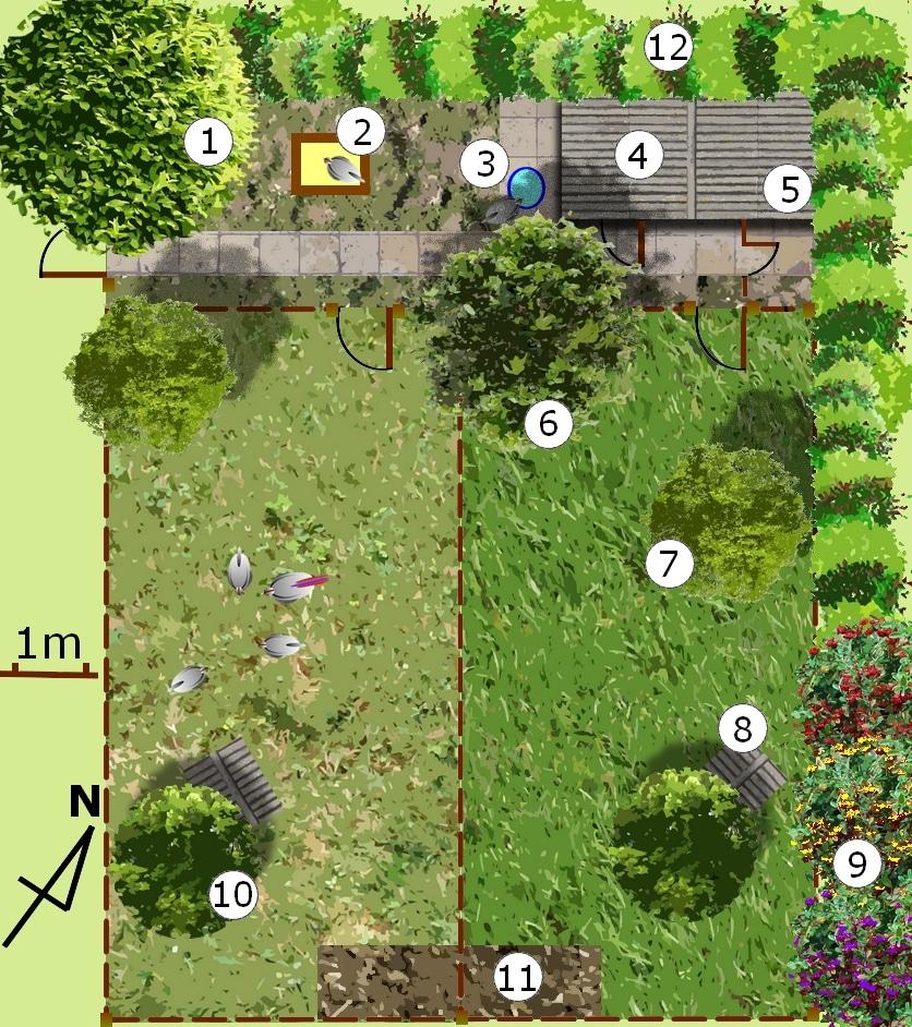 plan d'un parcours pour poules avec rotation-3