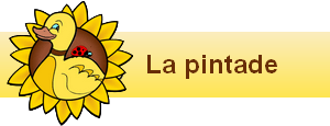 bannière widgets pintade