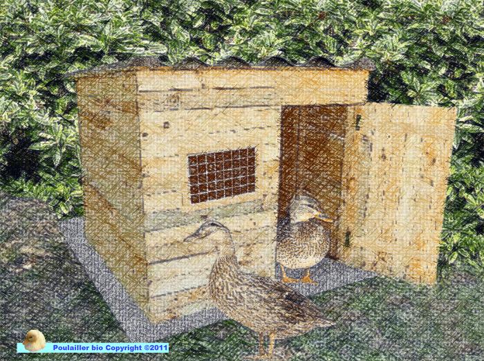 cabane pour canard faite avec des palettes