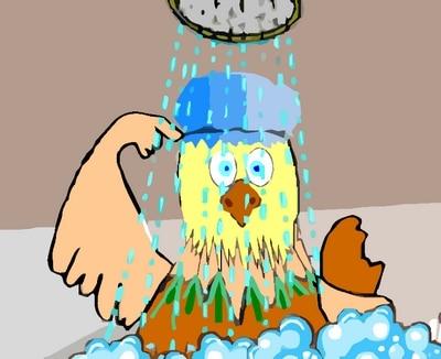 Poule rigolotte sous la douche