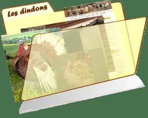 les fiches de la basses-cour bio - dindon