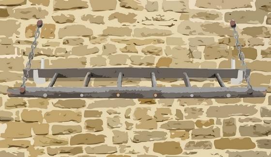 perchoir pour poules fait avec une vieille échelle
