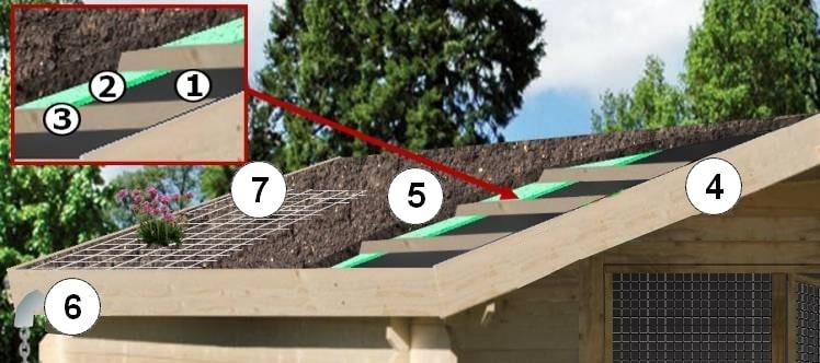 comment végétaliser et fleurir le toit d'un poulailler