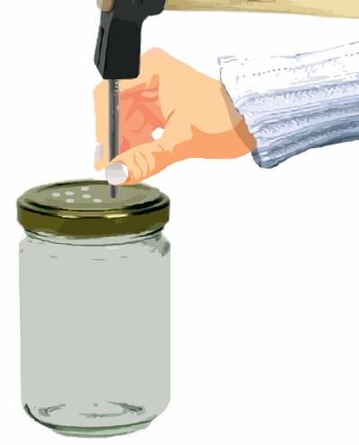 préparation des bocaux du germoir