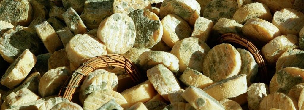 petits-fromage-de-chevre