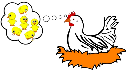 poule-qui-couve-2