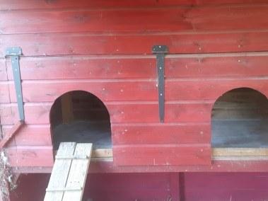 Marie-Ange - entrées pour les poules du poulaillier auto construit en lambris