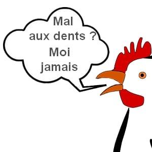 Non, les poules n'ont pas de dents ! Heureusement pour l'éleveur qui peut faire des économies de dentifrice « spécial gallinacés ».