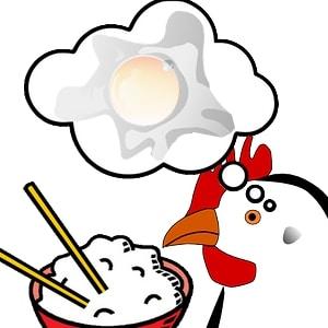 Au Japon les jaunes d'œufs peuvent être blancs, car on donne aux poules du riz. Et ces œufs pâlots sont appréciés !