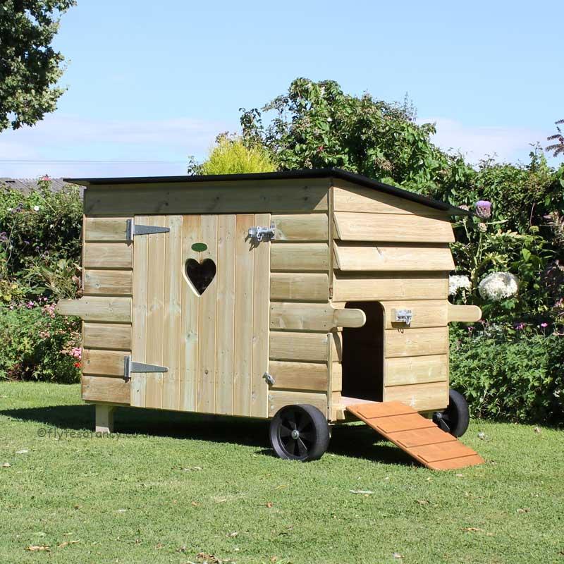 logement pour oie poules et cie
