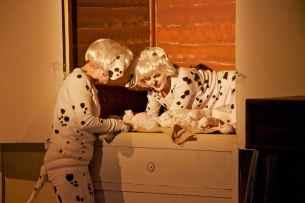 Dalmatians4