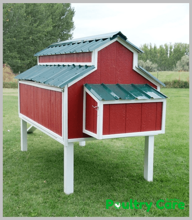 Amazing-Chicken-Coop-Plan-by-Home-Depot