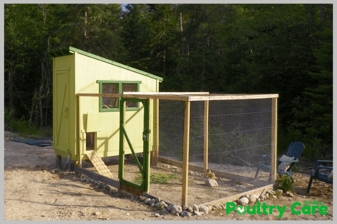 Downeast-Thunder-Farm-Chicken-Coop
