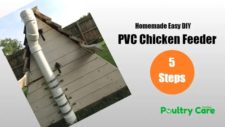 PVC-Chicken-Feeders
