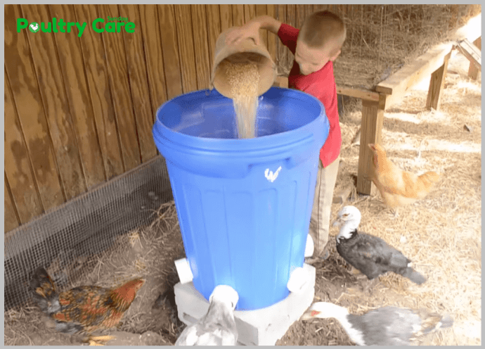 Trash-Can-to-Chicken-Feeder