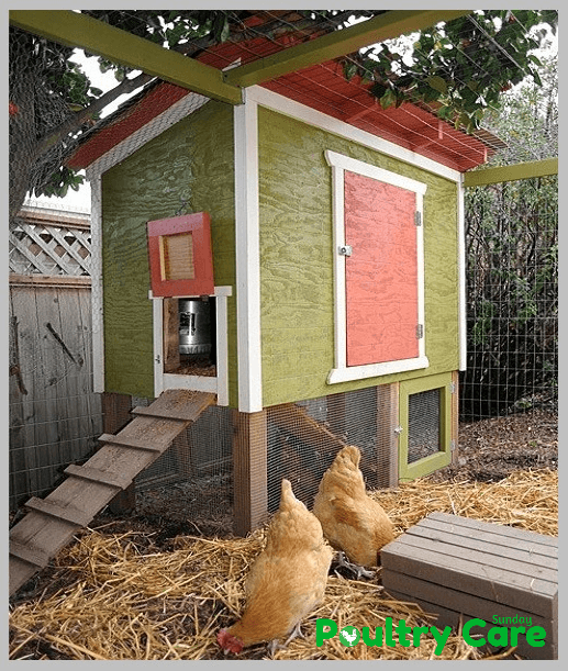 Urban-Chicken-Coop-Plan-by-The-Tangled-Nest