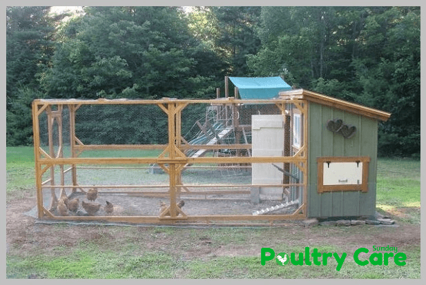 Recycled-Shed-Coop