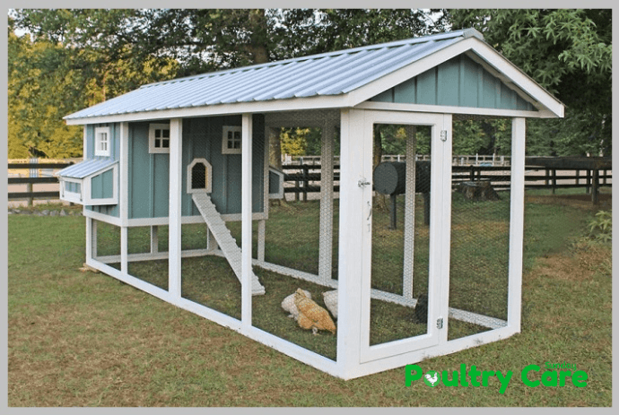 The-American-Style-Chicken-Coop