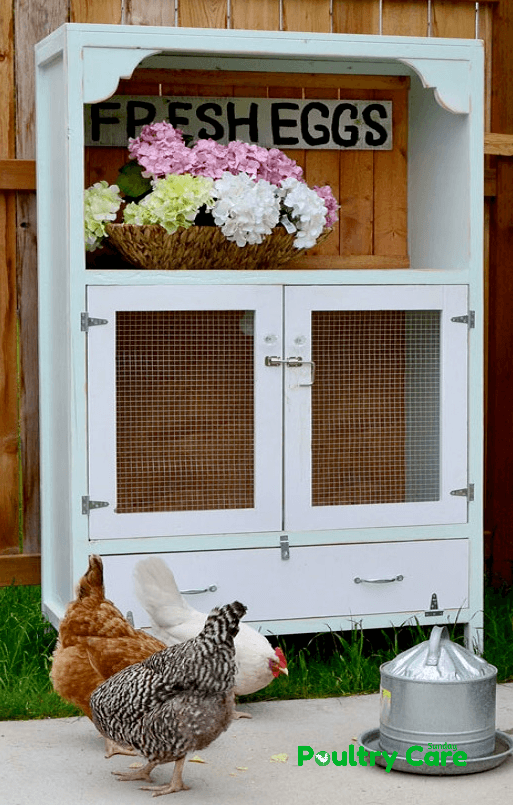 Chick Brooding Cabinet