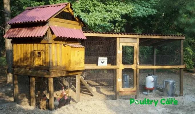 Steadfasts Chicken Coop