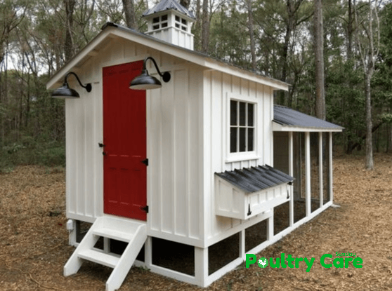 The Palace Redone Chicken Coop