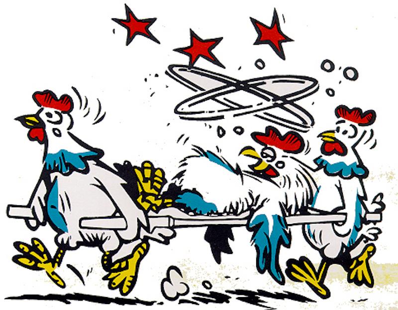 poultry stress