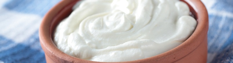 yoghurt to boost chickens immune system
