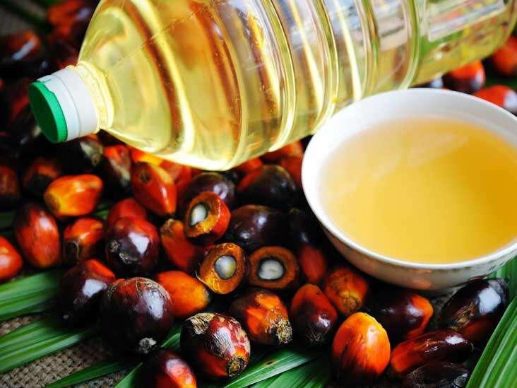 palm oil benefits