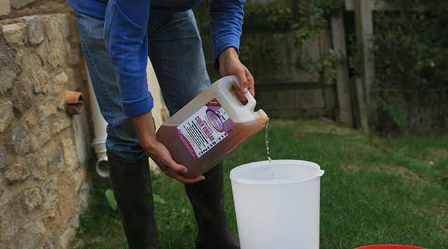 Adding-Apple-Cider-Vinegar-to-Water