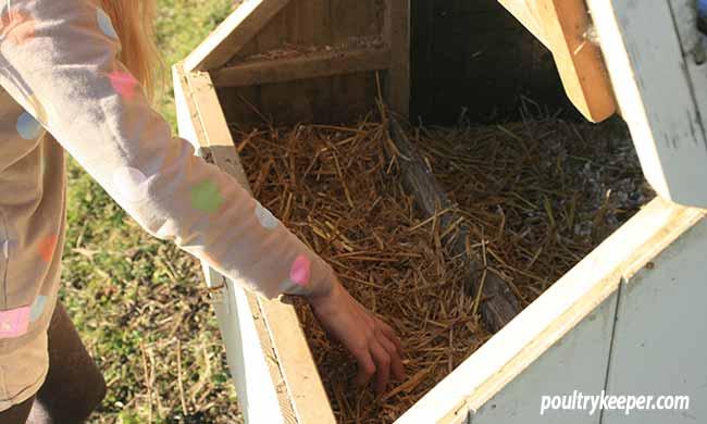Empty Nest Box