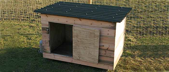 A cheap chicken or duck house for Building a duck pen