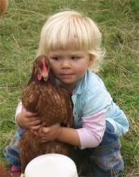 Child with Ex-Battery Hen