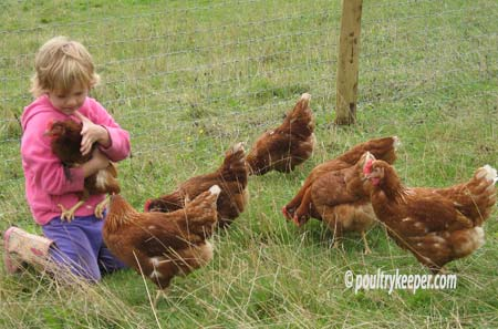 Hens with Child