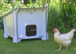 Cluckbuddy Chicken Coop