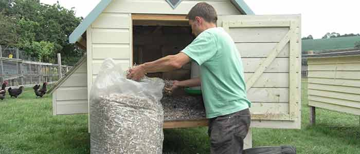 Finacard Cardboard Bedding