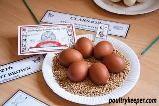 Six Bantam Eggs